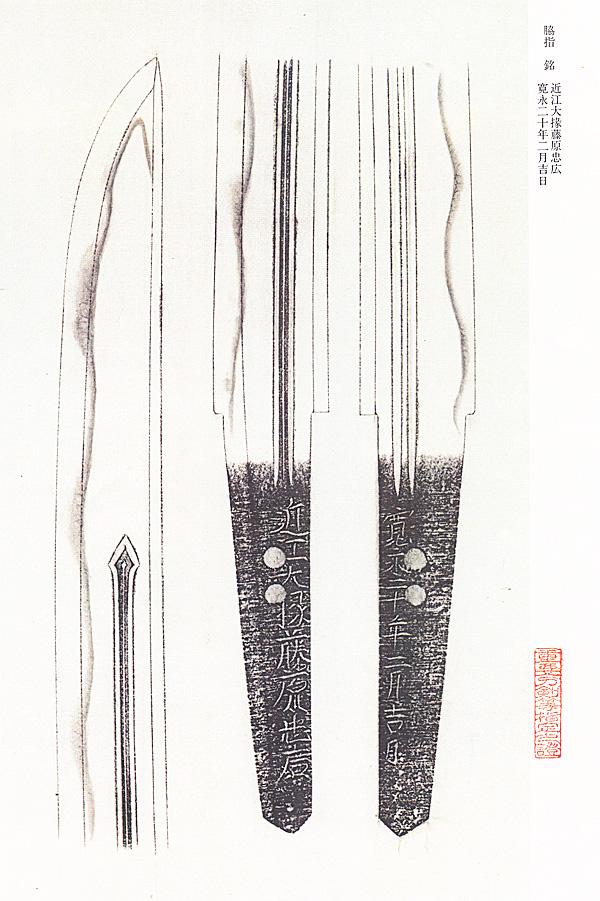重要刀剣、脇差、近江大掾藤原忠広、図譜2